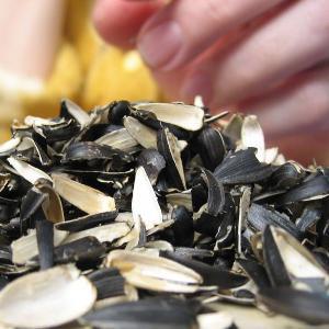 Сонник к чему снятся семечки подсолнуха черные