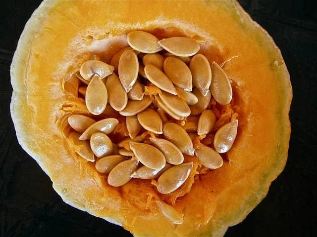 Лекарство от желудка из семечек тыквенных